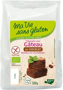 Preparation Pour Gateau Au Chocolat 300g Mvsg BIO