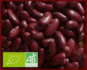 Haricots Rouges Secs Vrac France (KG) BIO