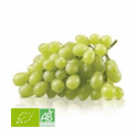 RAISIN BLANC SANS PEPIN FRANCE (KG) BIO
