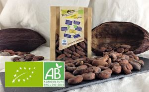 Feves De Cacao Crues 100g Bouga Cacao BIO